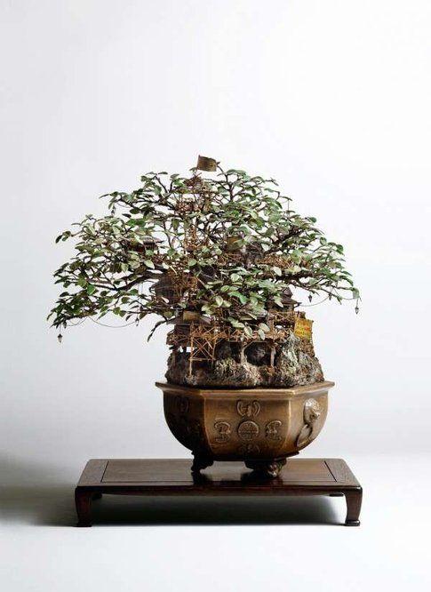 Le case sul bonsai di Takanori Aiba
