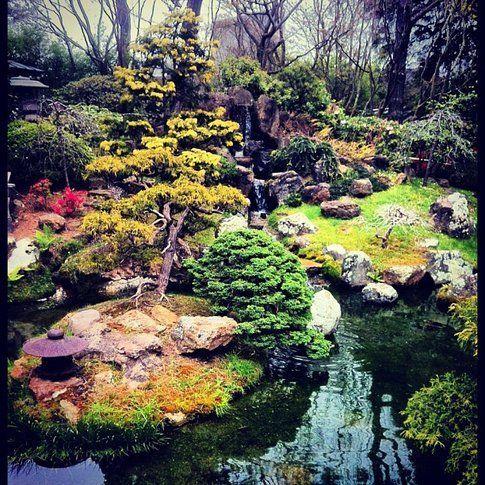 Japanese Tea Garden San Francisco - Foto di Simona Forti