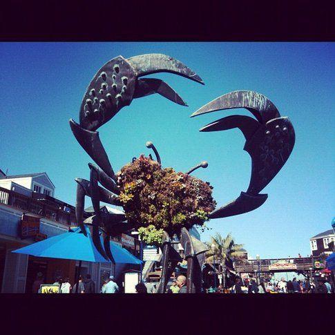 Pier 39 San Francisco - Foto di Simona Forti