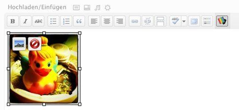 Instapress - Inserire le proprie foto instagrammate nei post