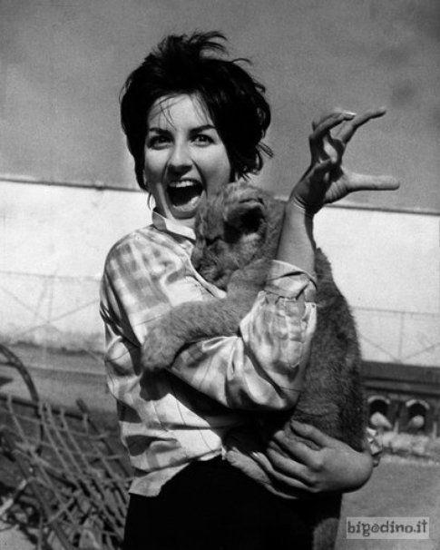 """Mina Mazzini detta la """"tigre di Cremona"""", Circo Togni, Cremona 1959"""