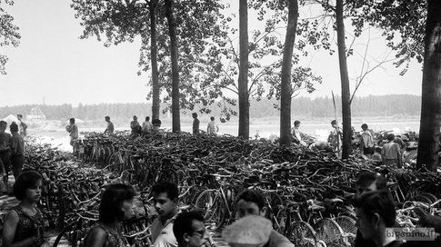 Biciclette in riva al Po, Cremona 1961
