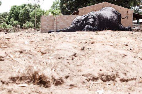 Gambia Street Art, ROA