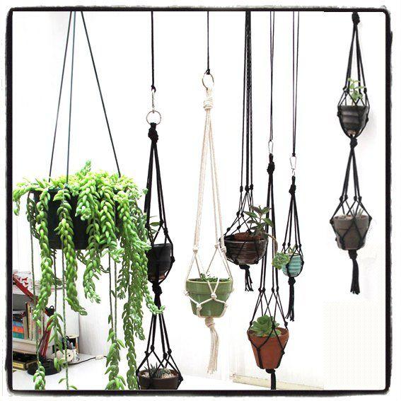 Hanging Garden: piante sospese in un semplice tutorial ...
