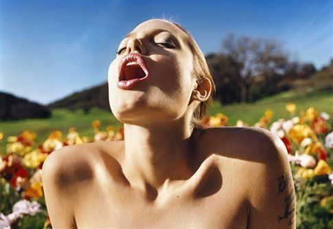 Lucca Center of Contemporary Art, David LaChapelle (Angelina Jolie Lusty Spring)
