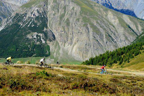 Prova qualcosa di nuovo, la bici da downhill è decisamente una botta d'adrenalina!