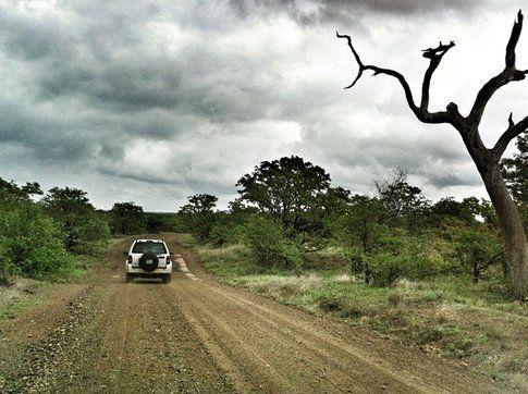 Kruger Park ©MarziaKeller
