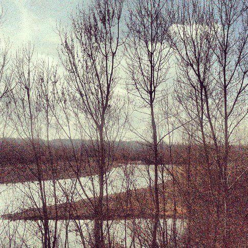 Boschi, fiume e macchina fotografica