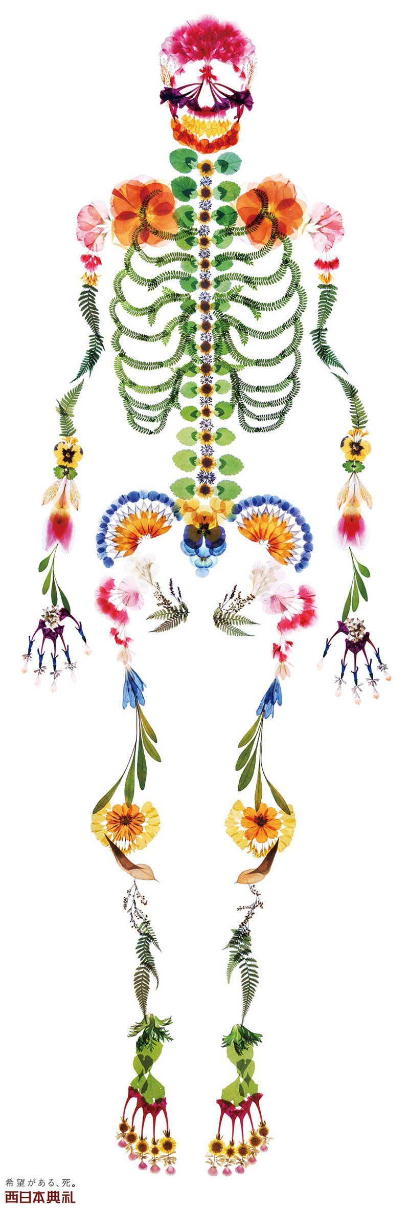 Un funerale per la vita: dal Giappone uno scheletro di fiori