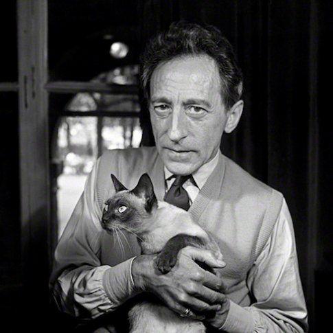 il gatto e Jean Cocteau