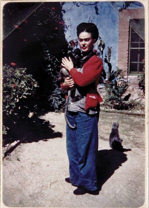 il gatto e Frida Kahlo