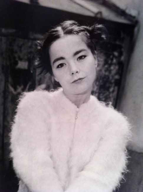 Björk - foto di Renaud Monfourny concessa da ufficio stampa ONO Arte