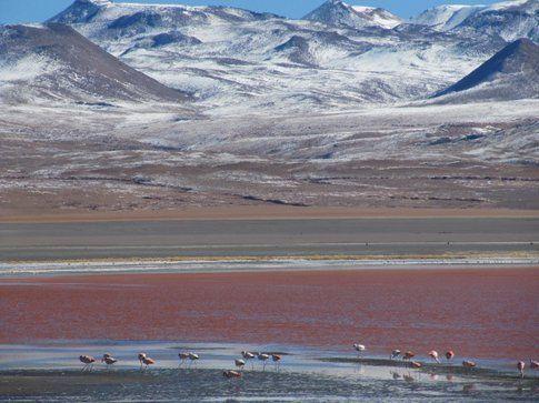 laguna rossa