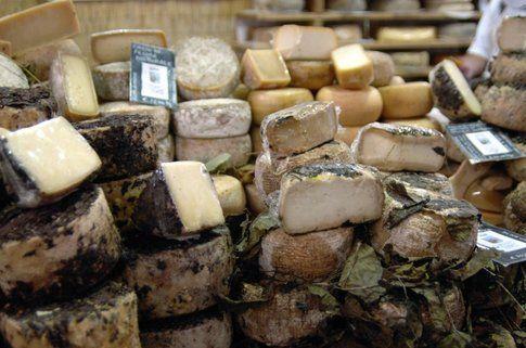 Cheese a Bra (credits image dall'archivio immagini di Cheese)