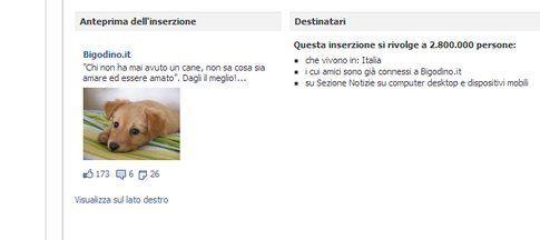Fb advertising. Fonte: facebook.com/bigodino.it