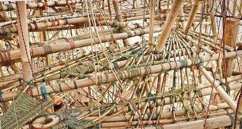 Big Bambù © Mike + Doug Starn
