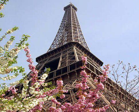 Parigi, una nuova primavera © Fotografia di Lorenzo Di Sansebastiano - © LonelyPlanet