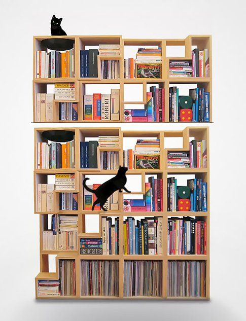 Corentin Dombrecht - Cat-Library