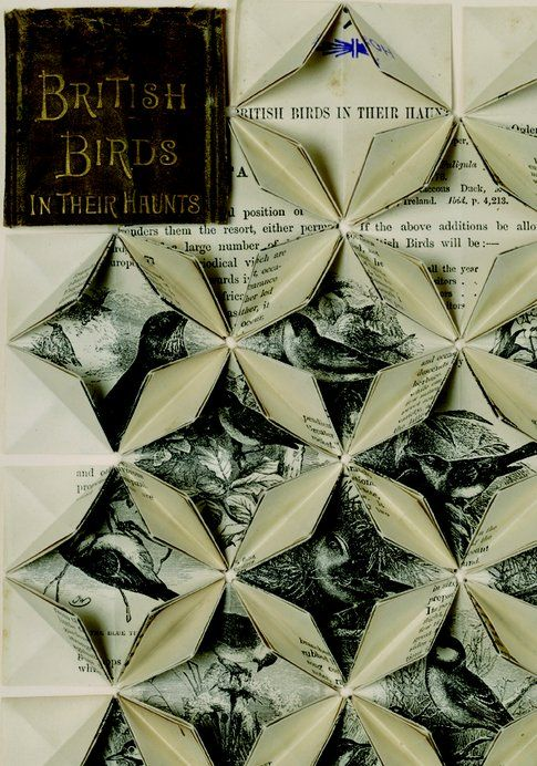 Francisca Prieto Between Folds. British Birds