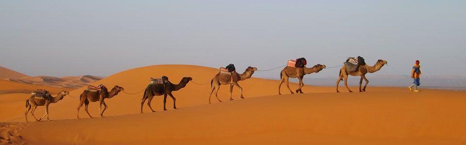 Viaggio in Marocco: Da Fes a Marrakech passando per il deserto