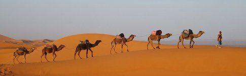 Deserto del Sahara - Photocredit: www.viaggiare-low-cost.it