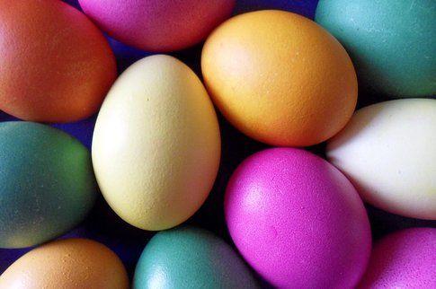 Caccia all'uovo sodo