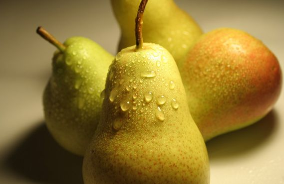 pear-carousel-02