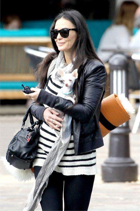 Demi Moore e il suo chihuahua