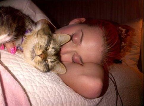 Katy Perry con Kitty Purry