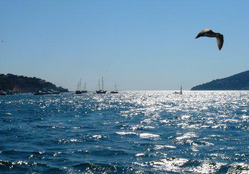 Sul traghetto per Kinaliada - foto di Elisa Chisana Hoshi