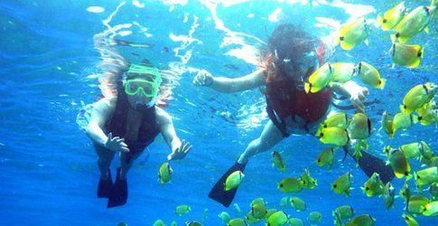 Snorkeling a Ustica - Foto by mondosicilia.it