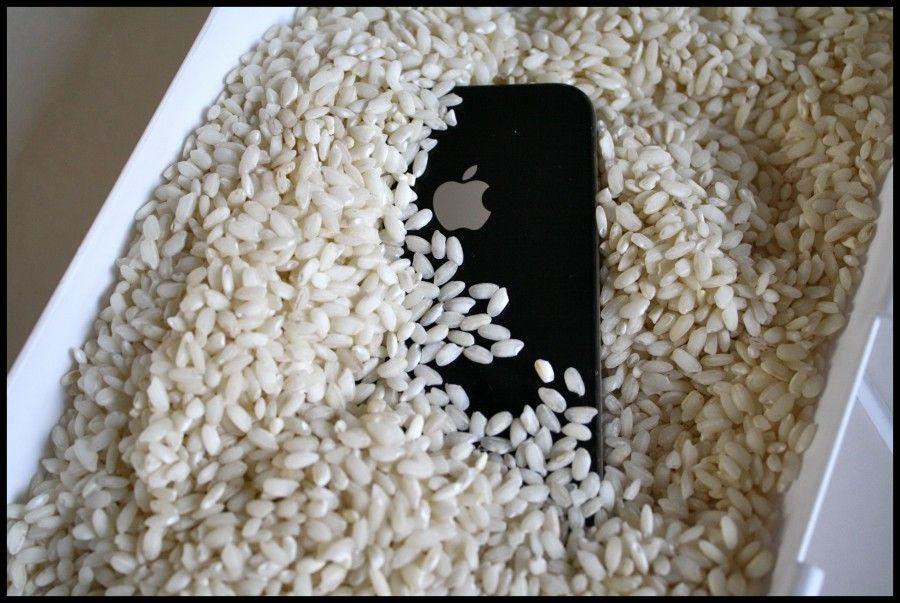 iPhone-Rice