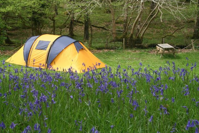 Vacanze in campeggio: consigli utili per organizzarle