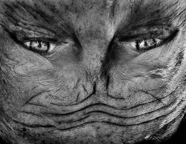 Capovolgi i volti umani e sembreranno volti... alieni