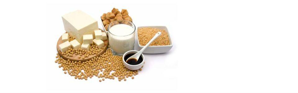 Proteine vegetali: lista degli alimenti che le contengono