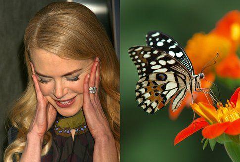 Nicole Kidman e la papilofobia