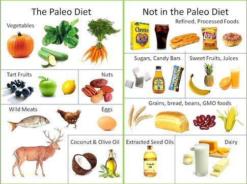 Alimenti consentiti dalla paleodieta