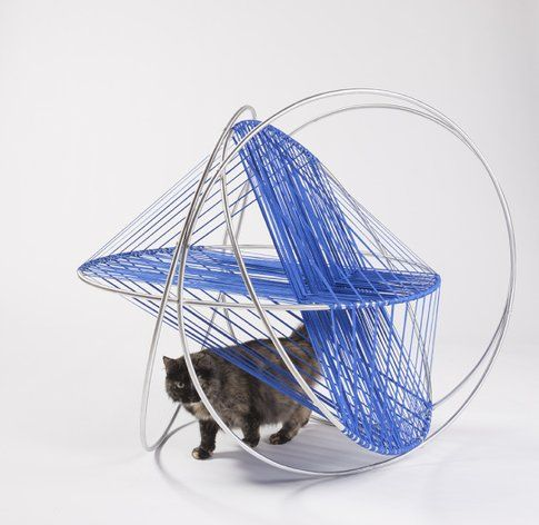DSH Architecture. Cat's Cradle ©Grey Crawford