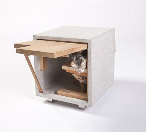 Standard Architecture Design. Cat Cube ©Grey Crawford