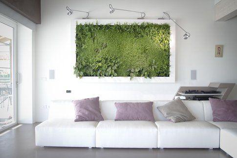 Sundar Italia quadri vegetali