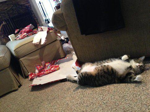 Umano, ho scartato tutti i tuoi regali (imgur.com)
