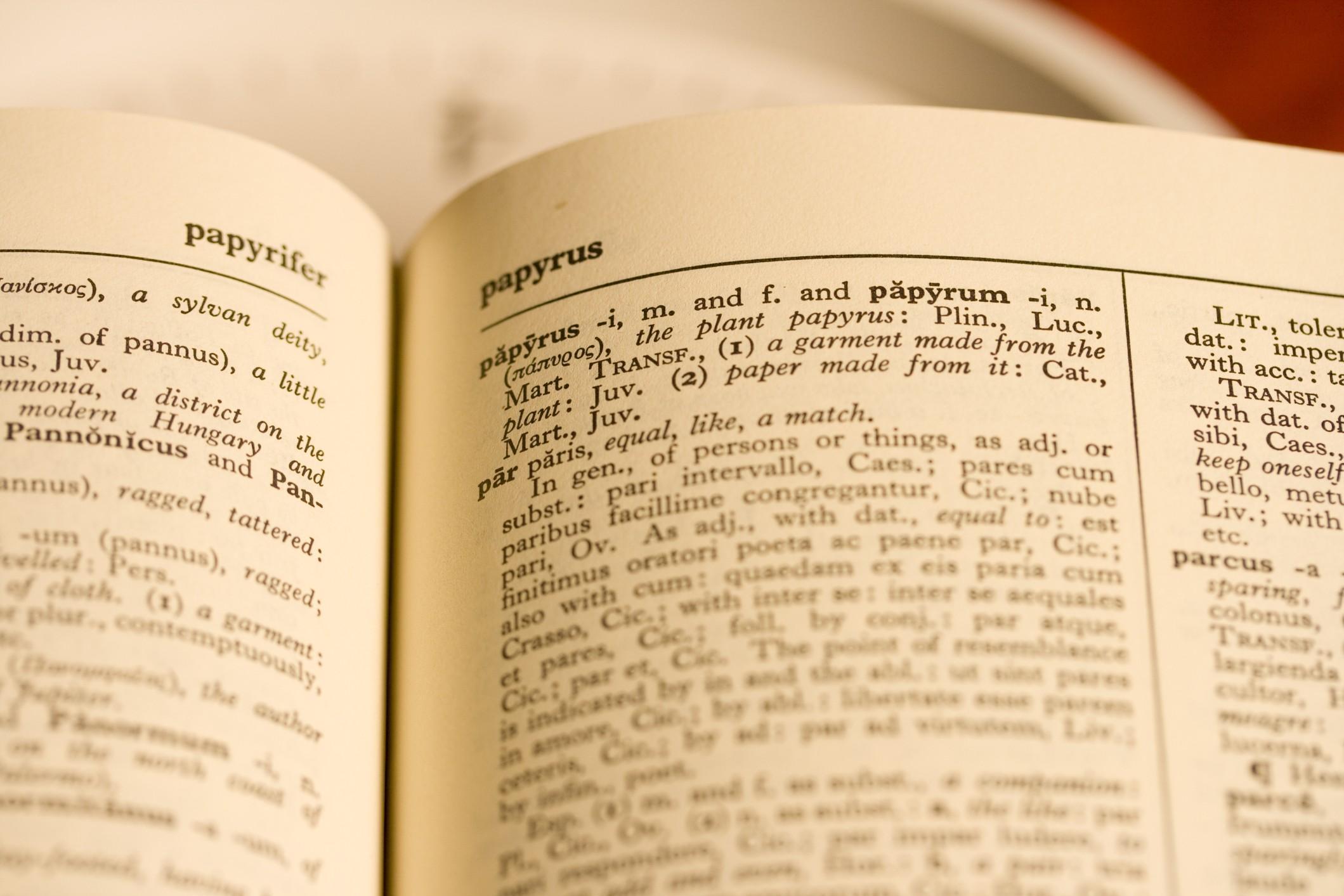 Gli 8 errori più comuni in italiano: scopri il somarello che c'è in te