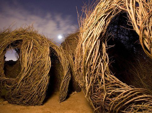 Patrick Dougherty Foto Adam Rodrigue