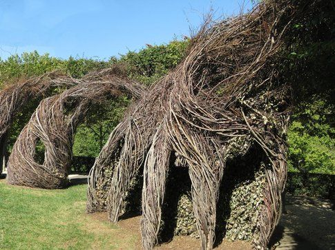 Patrick Dougherty Foto Andy Lynch
