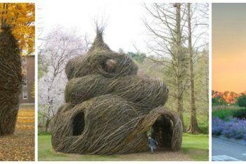 Le meravigliose costruzioni di rami di Patrick Dougherty