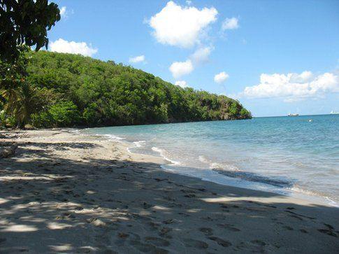 Martinica - Foto di Agnese Ciccotti