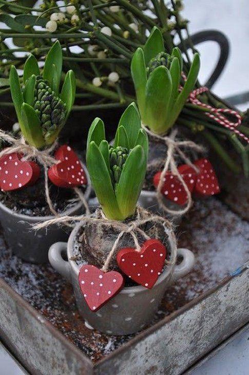 Piantine grasse decorate - Pinterest