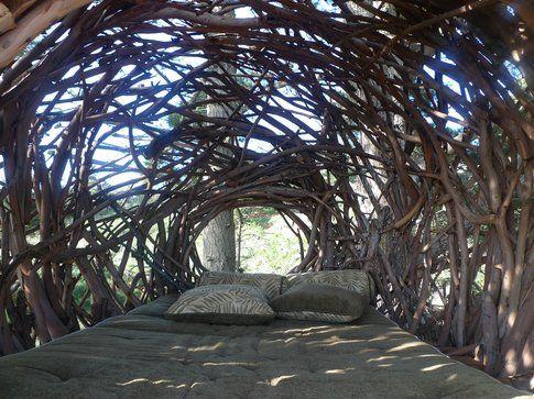 Treebones Resort, la vista da Human Nest