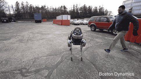 Spot: il nuovo cane robot di Google