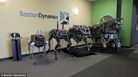 I robot-cani di Google